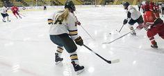 Fall 2016 Adult Hockey Tournaments