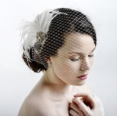 Lily Bella Holly Feather Birdcage is just £78.00   Crystal Bridal Accessories - www.crystalbridalaccessories.co.uk