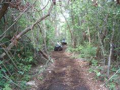 ATV riding in the jungle of Cozumel Mexico