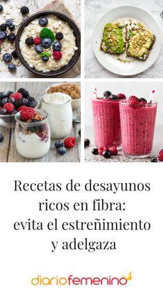 4 ideas de desayunos variados ricos en fibra 😋  #recetas #recipe #desayunos #breakfasts #healthylifestyle #DiarioFemenino