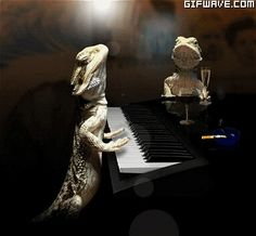 omgggg so cute ! little pianist dragon! <3