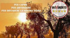 Taranto - NO TAP, ne' qui ne' altrove! Convegno M5S
