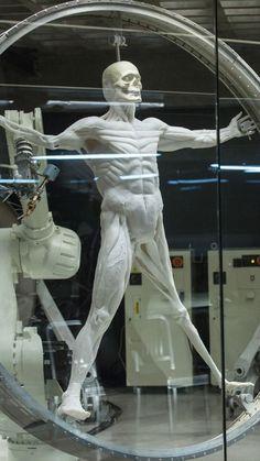 Heat-Seeking Robot Skin Senses Warm Bodies Like A Snake Westworld Tv Series, Westworld 2016, Westworld Hbo, Evans Wood, Timeless Series, Warm Bodies, Ex Machina, Hbo Series, Cyberpunk Art