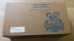 Spangler Science Club Subscription Box Review - July 2015 - Box