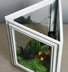 s 23 awesome things you didn t know you could do with old picture frames, crafts, repurposing upcycling, Make a faux terrarium light Picture Frame Projects, Unique Picture Frames, Crafts With Picture Frames, Old Frames, Frames On Wall, Old Pictures, Pretty Pictures, Foto Frame, Diy Frame