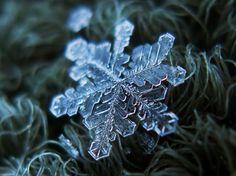 Da Schneeflocken eine grosse Oberfläche - und dadurch einen hohen Luftwiderstand - haben, schweben sie zu Boden, statt wie Regentropfen oder...