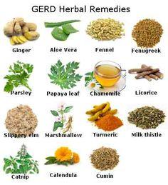 GERD/heartburn/acid-reflux herbal remedies