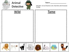 6a9ba38333395c1998068eb74fa7c7c5 Tame And Wild Animals Worksheet For Kindergarten on wild animals worksheets for kindergarten, adult and baby animals worksheet, animal and their babies worksheet,