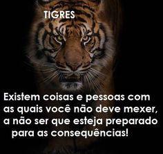 15 Melhores Imagens De Tigres Comunidade Em 2019 Tigres