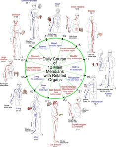 Shiatsu Massage – A Worldwide Popular Acupressure Treatment - Acupuncture Hut Qi Gong, Ayurveda, Acupuncture Points, Acupressure Points, Acupressure Therapy, Reiki, Shiatsu, Eastern Medicine, Traditional Chinese Medicine