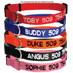 Custom Embroidered Dog Collar - Includes Personalized Pet Tag for Added Safety and Pet ID DogCollars