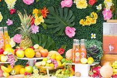 festa tropical no ja