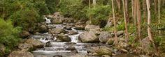 Panama Highlands: Cerro Azul, El Valle de Anton, Altos del Maria ...