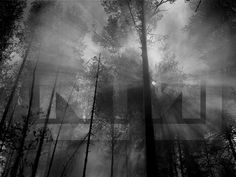 nine inch nails Black N White, Black And White Pictures, Facebook Layout, Nine Inch Nails, Art Google, Explore, Dark, Wallpaper, Painting