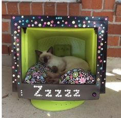 Unique Cat Furniture | ... With Custom Blinged Out Computer Monitor Cat Beds | Life With Cats