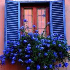 Love bright colors
