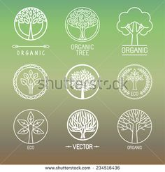 Vector tree logo - set of abstract organic design element - eco and bio circle badge - Shutterstock Premier