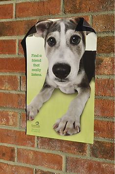 Awesome dog adoption posters - Imgur