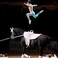 Perfect balance with the horse. Olympia, Vaulting, Horseback Riding, Teamwork, Equestrian, Farmhouse, Horses, Landscape, Deco