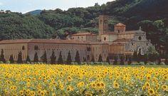 The Praglia Abbey and places of worship - Vigna Roda