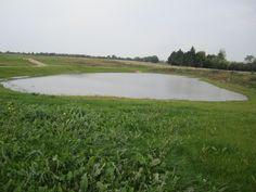 Vandhul på Vestergårdsmarken ved den nye udstykning mellem Hornsyld og Bråskov, hvor der er udviklingsmuligheder for området. det bliver spændende at følge, hvordan vandhullet bliver beboet, begroet og begloet