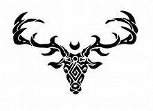 Image result for Celtic Stag Designs