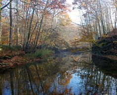 Solitude...Lobdell Reserve -- Alexandria, Ohio