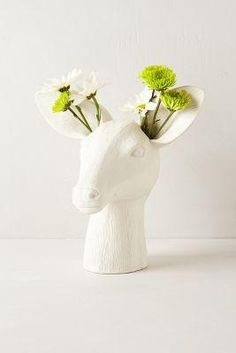 Vase, my home is going to be so weird...
