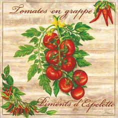 Tomates en Grappe (Noel Romero)