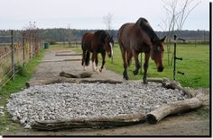 Laufstall Hollergarten; ein kleiner Laufstall in Gauting / Hausen Paddock Trail, Horse Paddock, Horse Stables, Horse Farms, Dream Stables, Dream Barn, Horse Care Tips, Horse Property, Horse Training