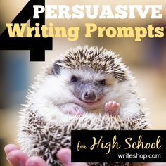 4 persuasive writing prompts for high school