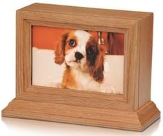 Pet Urn Oak Wood Photo Frame Pet Urn with Glass Frame Dog Cat Small Animal Cremation Urn *** Details can be found by clicking on the image. Pet Cremation Urns, Cremation Jewelry, Pet Dogs, Dog Cat, Pets, Dog Urns, Cat Memorial, Photo On Wood