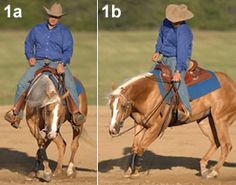 Reining Hand Position in the Rollback, Spin