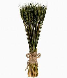 Tall Green Wheat Bundle