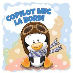 "Autocolant (sticker) auto sau pentru orice suprafata neteda (geam, oglinda, aparatura electrocasnica) personalizabil ce reprezinta un pinguin cu ochelari de aviator si mesajul ""Copilot mic la bord!"""