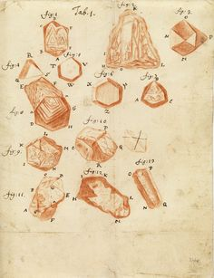 Grains of sand | Antonie van Leeuwenhoek from a letter to the Royal Society, 4th December 1703.