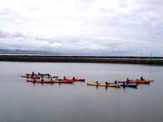 Pillar Point Harbor Sea Kayak Tour