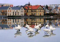 'Reflections' - photo by Helgi Skulason, via Flickr;  Reykjavik, Iceland