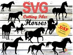English Horseback Riding, Stall Signs, Cutting Horses, Silhouette Cutter, Black Stallion, Horse Crafts, Horse Stalls, Wood Engraving, Wild Horses
