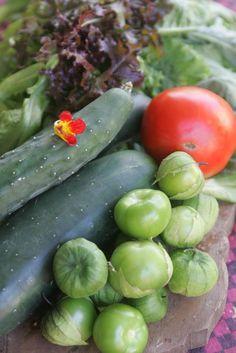 """¡De la granja a tu plato! Sal! investigó cómo el movimiento """"From Farm to Table"""" crece en la gastronomía puertorriqueña: http://www.sal.pr/eventoespecial/delagranjaatuplato.html"""