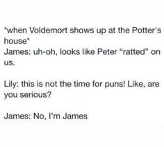 Harry potter marauders when voldermort comes Harry Potter Love, James Potter, Harry Potter Universal, Harry Potter Fandom, Harry Potter Memes, No Muggles, Are You Serious, Yer A Wizard Harry, Fandoms
