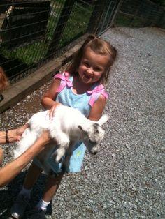 Tootsie helping Emma holding a goat . Smokey Mountains