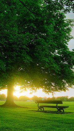 Spring greeneryPRECISO SENTAR NESSE BANQUINHO PARA DESCANSAR UM POUQUINHO....