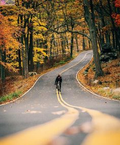 For Pure Fun, Relaxation And Also Excercise, I Select Mountain Bicycle Riding - Cycling precision Cycling Art, Road Cycling, Cycling Bikes, Mountain Bicycle, Mountain Biking, Motogp, Ducati, Pinterest Foto, Harley Davidson