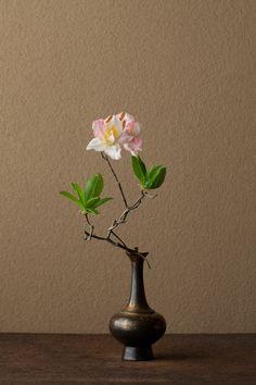 一日一花 川瀬敏郎  山の気配を残しています。ほのかな赤もはにかみのよう。   花=蓮華躑躅(レンゲツツジ)   器=金銅華瓶(鎌倉時代