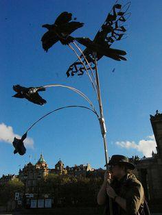 Darren's crows, samhuinn