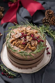 Chocolate gingerbread cake – Famous Last Words Fancy Desserts, Köstliche Desserts, Fancy Cakes, Christmas Desserts, Cranberry Orange Cake, Cranberry Bread, Cranberry Recipes, Christmas Cake Pops, Christmas Cake Decorations
