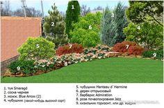 The Best Stone Waterfalls Backyard Ideas – Pool Landscape Ideas Hardscape, Garden Plants Design, Outdoor Landscaping, Front Garden Landscape, Lawn And Landscape, Conifers Garden, Garden Planning, Garden Design, Rock Garden Design