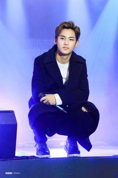 Mingyu bias ❤
