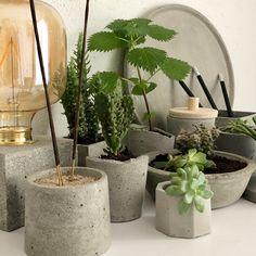 Natural Materials, Cement, Objects, Nature, Plants, Handmade, Design, Bonito, Naturaleza